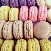 Shop — Cameo Macaron