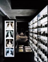 Ruhr-Museum-hg-merz-architekten-photo-by-Brigida-Gonzalez-yatzer-15.jpg (JPEG Image, 714x909 pixels)