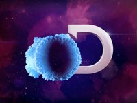 Discovery on Vimeo