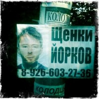 Celebrities in Street Ads | English Russia