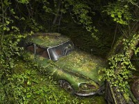 Photos of abandoned cars overrun by nature — Lost At E Minor: For creative people