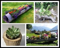DIY Tree Log Garden Planter