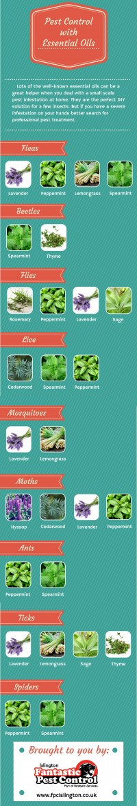 Pest Control with Essential Oils | Visual.ly