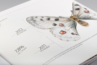 Prometey Bank Annual Report 2012 on