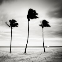 Josef Hoflehner Photographer | Florida