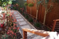 Epping - Contemporary - Landscape - sydney - by Greenminded Landscapes