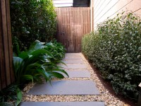 Hawthorn Garden - Contemporary - Landscape - melbourne - by Jenny Smith Gardens