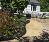 Curved bed in Contemporary Garden - replace lawn with decomposed granite - Contemporary - Landscape - san francisco - by Dig Your Garden Landscape Design