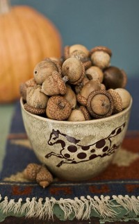 Bowl Of Acorns | Autumn Looks | Pinterest