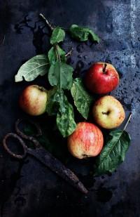 Suvi Sur Le Vif | Autumn | Pinterest