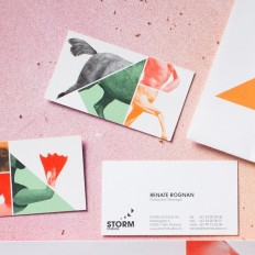 Business cards / Storm Studios by Commando Group