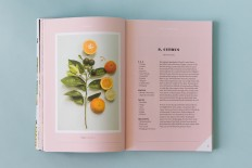 Forager, A Subjective Guide To Miami's Edible Plants - Fonts In Use