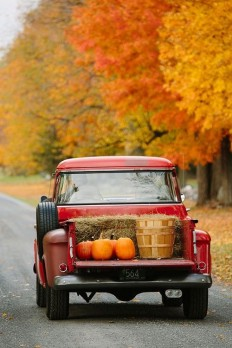 StoneGate Farm ???????? ??? ? ????? Love Old Trucks | Pinterest