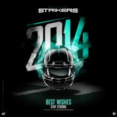 Strikers - 2013/2014 on