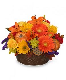 Pumpkin Gathering Autumn Arrangement in Highland, MI - FLOWER FACTORY