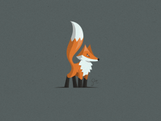 Lil Fox by simc