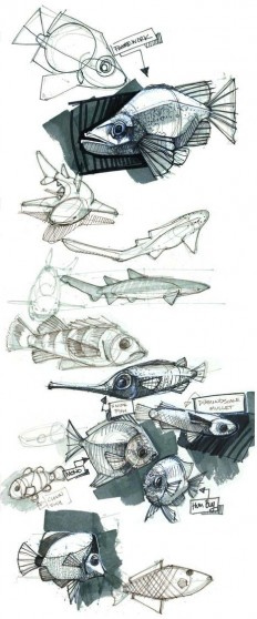 Sketch / rsz_44_fish1.jpg