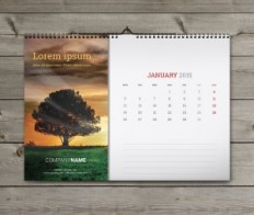 Wall Monthly Calendars 2015 Design Templates, Printable Calendars eps pdf indd   Designs of Calendars - Templates