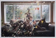 Julie Saul Gallery - Sarah Anne Johnson - Wonderlust