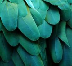 Pins von leydzo.tumblr.com auf Pinterest