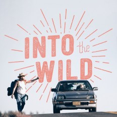 Into The Wild on Inspirationde
