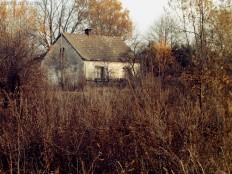 November melancholy by rosaarvensis