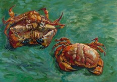 Vincent van Gogh | Two Crabs | L995 | The National Gallery, London