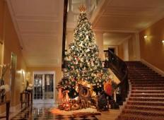 Dolce & Gabbana Design Claridge's Christmas Tree 2014 - Luxuryes