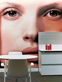 A Blushing Beauty   Interior Design