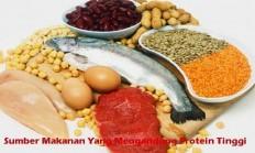 Sumber Makanan Yang Mengandung Protein Tinggi