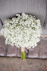Baby's Breath Bouquet | Emmaline Bride