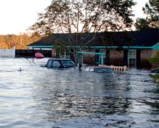Flood Insurance Laws To Be Changed | Remeo Realty