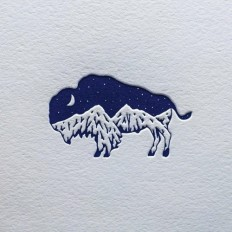 My bison mountain logo design on Inspirationde