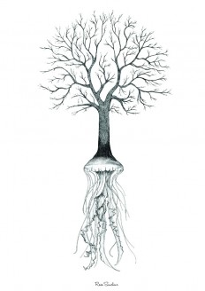 Jelly Tree — Designspiration