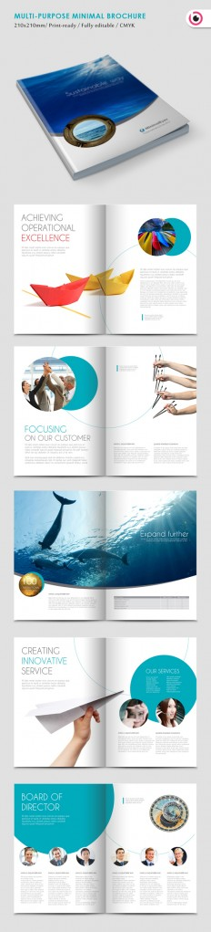 Minimal Eyes Brochure Template on