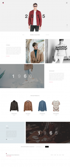 Fashion Website on Inspirationde
