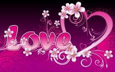 Valentine's Day Love Picture
