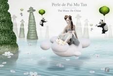 35_02122_Special.T_by_Nestl_-_Illustrations_-__Perle_PaiMuTan.jpg (1746×1179)