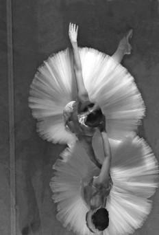 Ballet / Ballett / Ballerina / ???????? / Dance / Danza / Danse by ???? ????