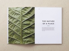 VISUALGRAPHC (The Nature of a place)
