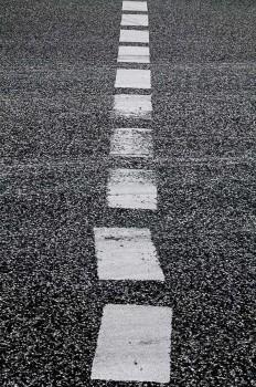 Rui Calçada Bastos | PICDIT