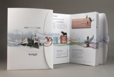 Brochure Design Showcase
