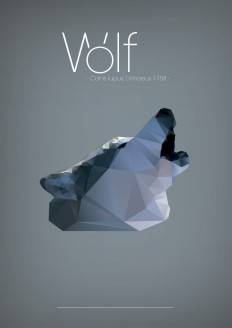 Polygonal illustrations on Inspirationde