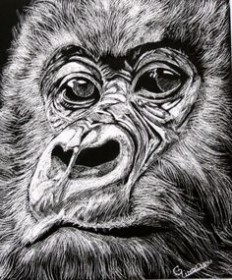 Scratch board art no Pinterest | 50 Pins