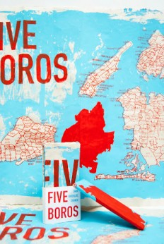 Five Boros Chocolate (Student Project) on Packaging of the World - Creative Package Design Gallery