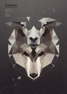 Wolf in sheep skin by Kevin Harald Campean on Inspirationde