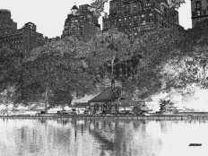 Lake view Central Park 3 by Howard Lee - Art Print from The Untapped Source