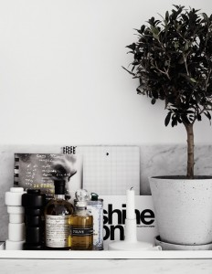 TrendHome: Swedish Work/Live Space | Trendland