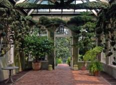 Amazing Historic Public Garden: Dumbarton Oaks - WebEcoist