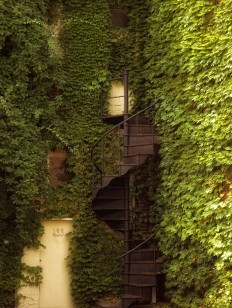 Toutes les tailles | Stairway to ......................... | Flickr: partage de photos!